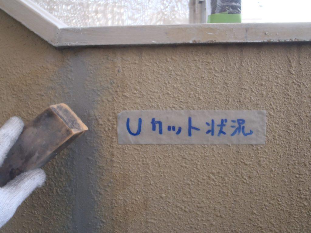 クリア・エヌ 045